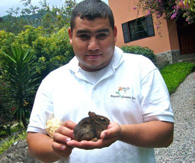Boquete Garden Inn Panama Wildlife